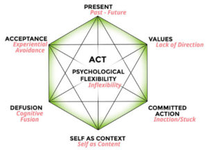 brief demo of acceptance and commitment therapy psychology info